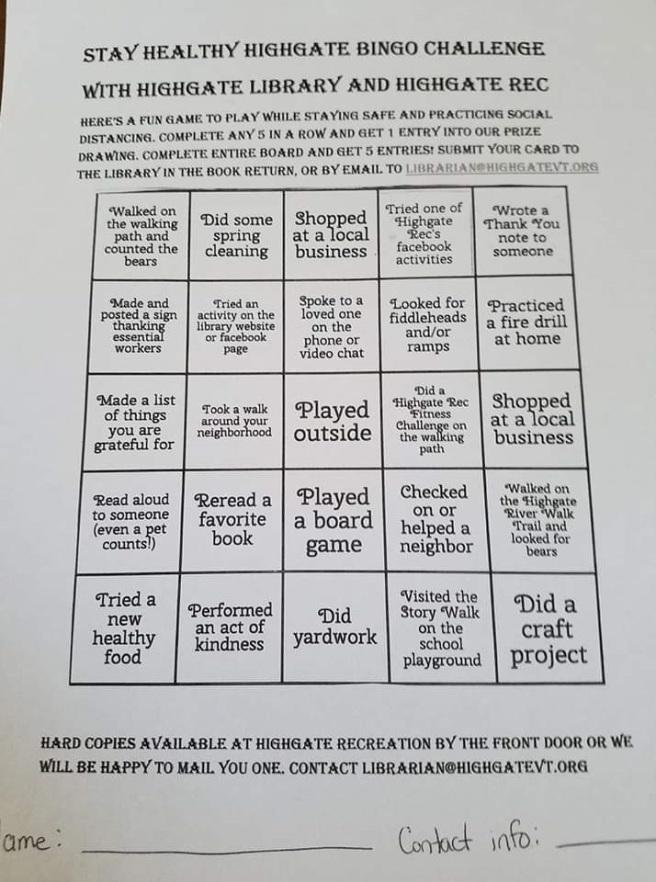 stay healthy bingo challenge